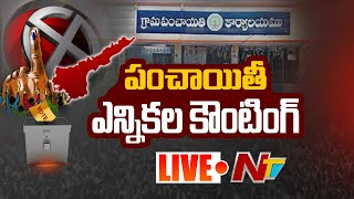 Panchayat Election Counting LIVE | Panchayat Election Results LIVE | NTV LIVE