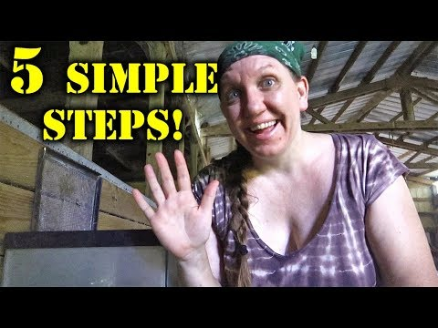 , title : '5 SIMPLE Steps To Raising Mealworms!
