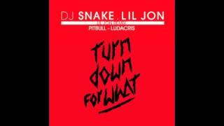 DJ Snake Feat Lil Jon & Pitbull & Ludacris Turn Down For What (Remix)