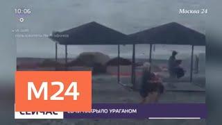 В Сети появились кадры урагана в Сочи - Москва 24