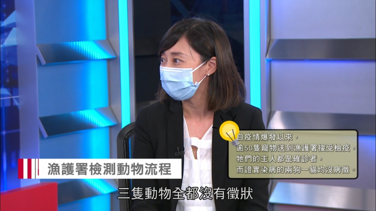 Senior Veterinary Officer of Agriculture, Fisheries and Conservation Department Dr Esther To | HK Open TV (Cantonese) (18.5.2020)