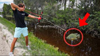 BOW FISHING INVASIVE FISH to FEED My PETS!!