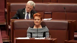 Pauline Hanson: 'Gutless' politicians blocked All Lives Matter motion