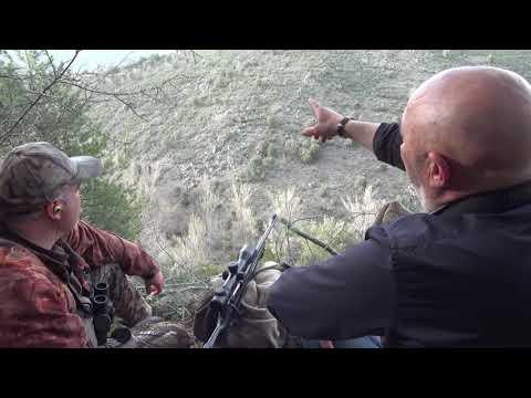 Experiencias de caza 3M corzo Javier Prieto
