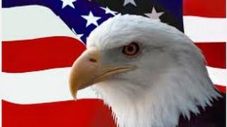 7 Nguyên tắc sống của đại bàng - biểu tượng của nước Mỹ