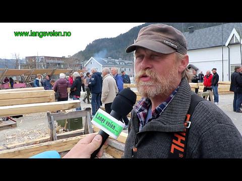 Narvik enslig