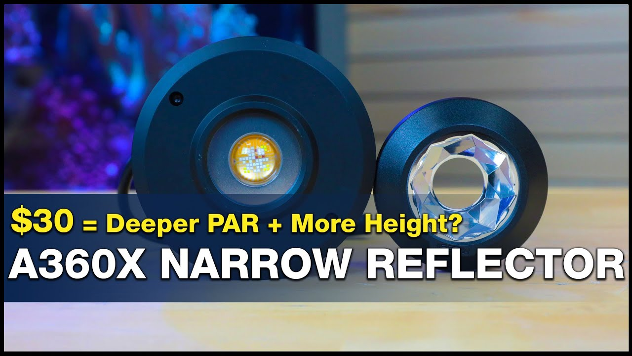 Can you change your reef light's