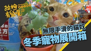►拉姆有幾噗◄ 台北冬季寵物展【PART II】幾噗買了什麼咧┃Taipei Pets Show 2017 II ☁