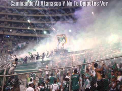 """Todos Los Rexixtontos Son Unos Putos"" Barra: Frente Radical Verdiblanco • Club: Deportivo Cali"