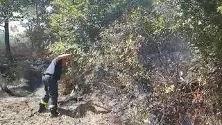 incendi-giornata-di-super-lavoro