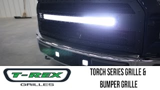 In the Garage™ with Total Truck Centers™: T-Rex Grilles Torch Series Grille