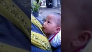 Download Video Bayi minta susu ASI ke orang lain MP3 3GP MP4