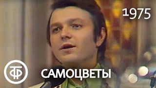 """Ансамбль """"Самоцветы"""" """"Там, за облаками"""" (1975)"""