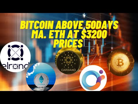 Bitcoin trader forum