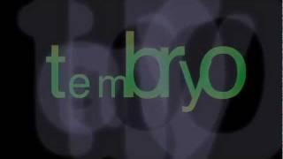 Video Tembryo - Tremblaya
