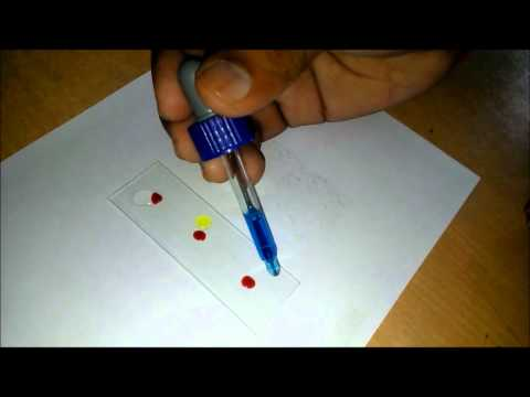 How To Test Your Own Blood Groups ?