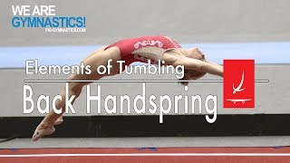 Elements of Tumbling - BACK HANDSPRING