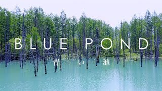 空撮 青い池 / Blue Pond taken with DJI Mavic Pro