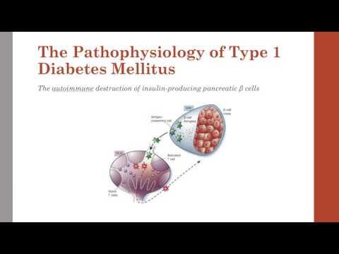 Glyukoberri für Diabetes
