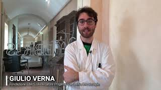 Giulio Verna | Infiammazione e cancro