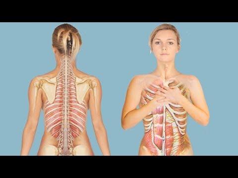 Что правильно есть для укрепление костей и суставов