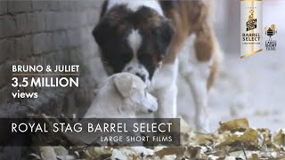 Bruno & Juliet | Imtiaz Ali | Royal Stag Barrel Select Large