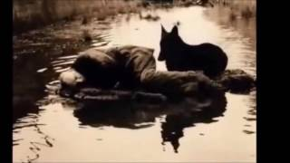 Psychedelic Anatolian Rock Compilation-  Erkin Koray