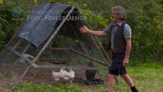 Tom Kendall Permaculture Design Course