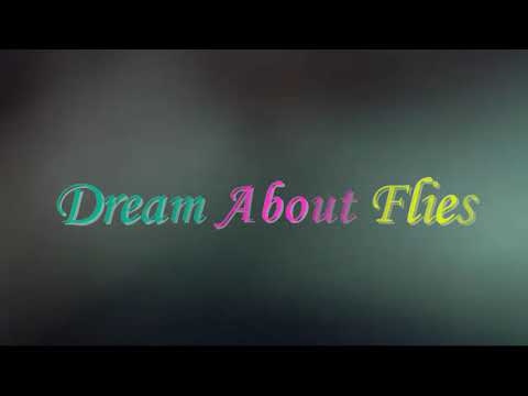 What Does It Mean When You Dream About  Flies
