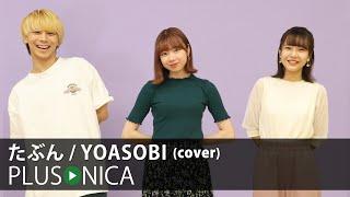 たぶん / YOASOBI (cover)