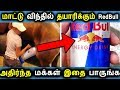 RedBull Energy Drink Review in Tamil | is it safe or not | Tamil Healty News