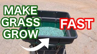 How to Make Bermudagrass GROW, SPREAD, and FILL in Bare Spots