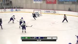 NWHL Highlights: Connecticut at Minnesota 1.20.19