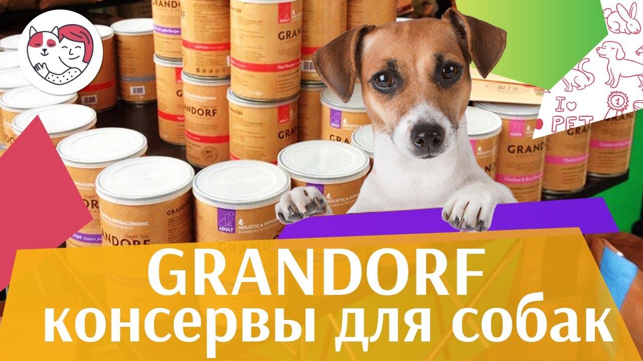 Grandorf консервы для собак на ilikepet