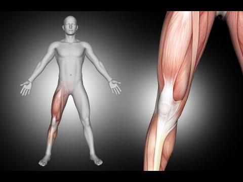 Il mal di schiena che curare la lombaggine