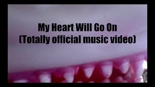 My Heart Will Go On -  Recorder By Candlelight By Matt Mulholland (Totally Official Music Video)