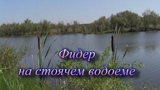 Лучшие фидерные оснастки фидер в стоячей воде