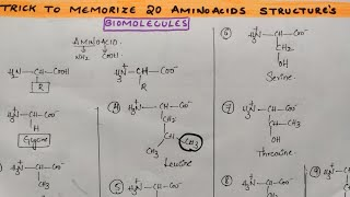 Trick to draw & memorize 20 Amino acid structures from Biomolecules class 12 chemistry by Komali mam