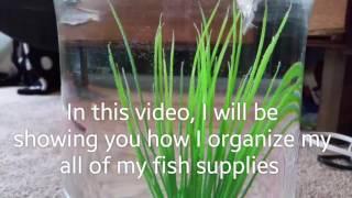 Reorganizing The Fish Supplies