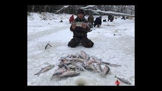 Рыбалки на ямале зимой