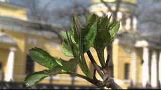 Днепропетровск, Весна в Днепропетровске