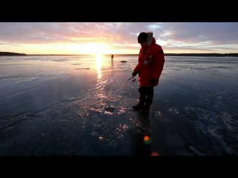 Isfiskeri efter aborrer på Esrum Sø