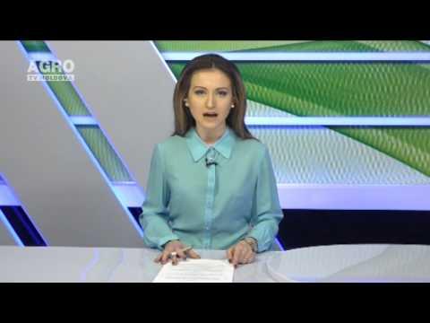 Chimforex Sa Bucov Ploiesti - Casa Schimb Valutar Forex Ploiesti, Localbitcoins Change Username