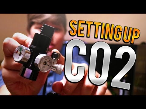 How To Set Up CO2 In An Aquarium!!!!