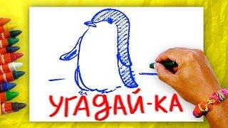 Загадки про птиц + Урок рисования.