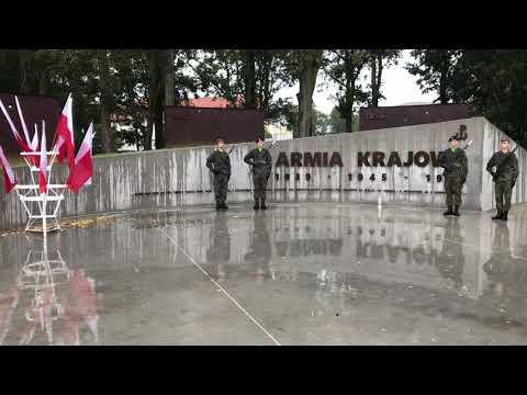Wideo1: Odsłonięcie pomnika AK w Lesznie