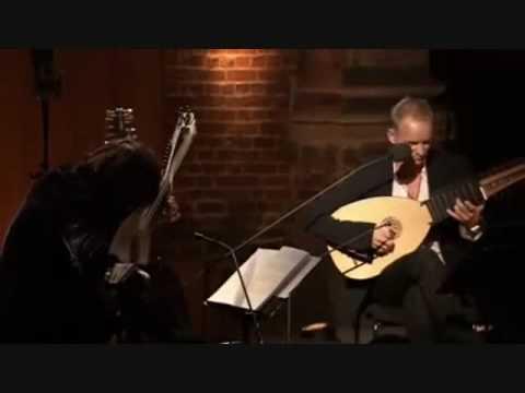 Sting & Edin Karamazov - Fields Of Gold (Lute)