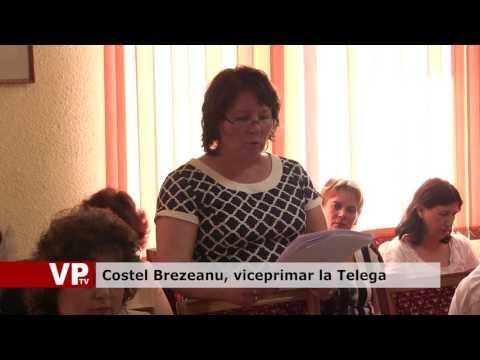 Costel Brezeanu, viceprimar la Telega