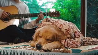 KHÔNG MUỐN YÊU LẠI CÀNG SAY ĐẮM ( Acoustic Ver.) | Bun & Orin Cover