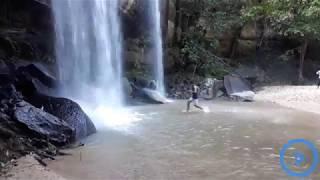 Walking through Shimba Hills forest to the serene Sheldrick Falls